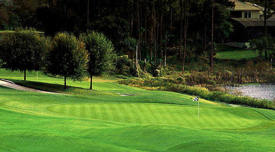 A view of a green at DeBary Golf & Country Club