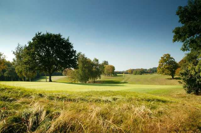 Behind the 2nd hole at Welwyn Garden City Golf Course