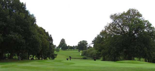 Tree-lined fairways as seen at Stoneleigh Deer Park Golf Club