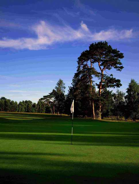 Meon Course at Meon Valley: #15