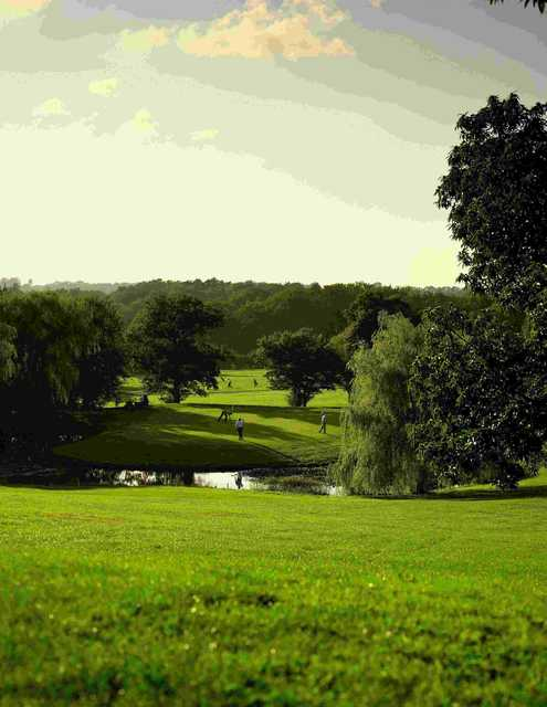 Golfers on the 12th green at Meon Course from Meon Valley Hotel & Country Club