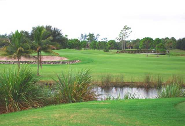 A view from Polo Trace GC