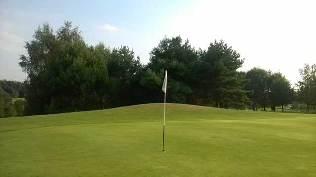 On the 8th green at Brentwood Golf Club