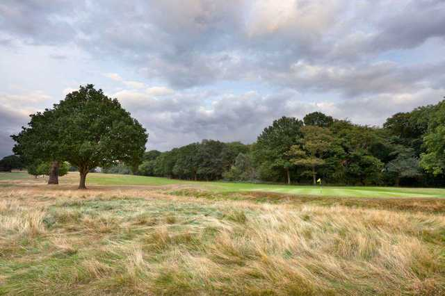A view of the 4th green at Richmond Park Golf Club from the rough that guards it.