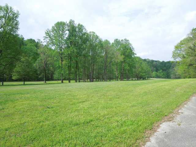 A view from Old Stone Fort Golf Course