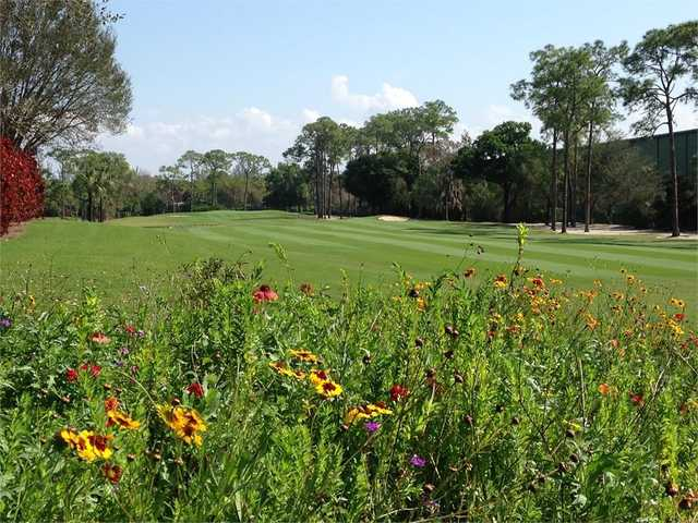 View of the 4th green at The Hideaway Country Club