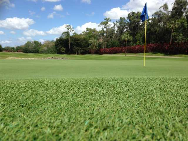View of the 16th green at The Hideaway Country Club