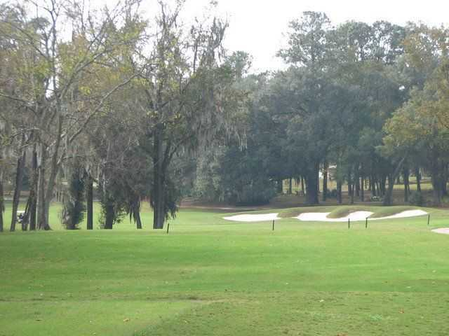 A view from Ocala National at Golden Hills