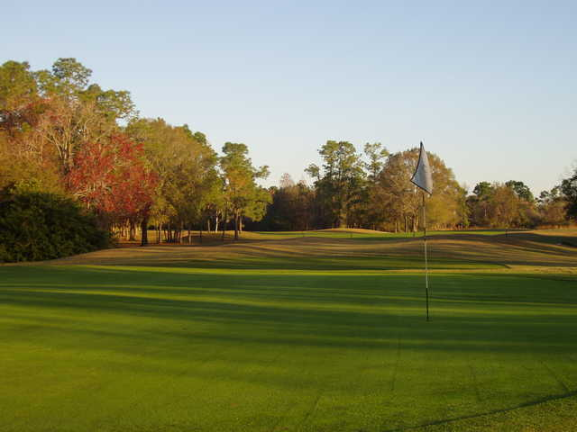 A view of a green at Forest Course from Eagles Golf Club