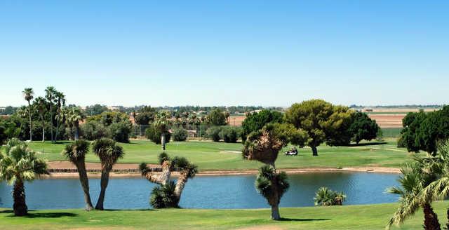 A view from Desert Hills Golf Course