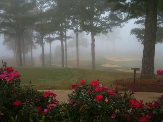 Misty view from The Links At Tuscaloosa