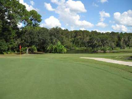 A view of the 12th green at University of South Florida Golf Course - The Claw