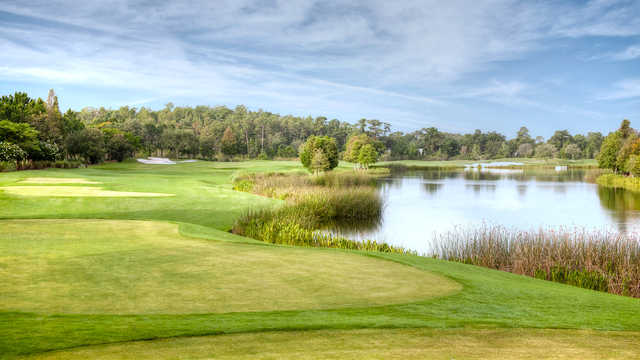 View of the 3rd green at Shingle Creek Golf Club