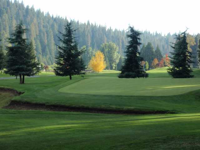 A view of a green at Sequoia Woods Country Club.