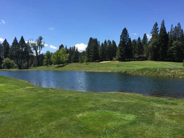 A view over the water from Sequoia Woods Country Club.