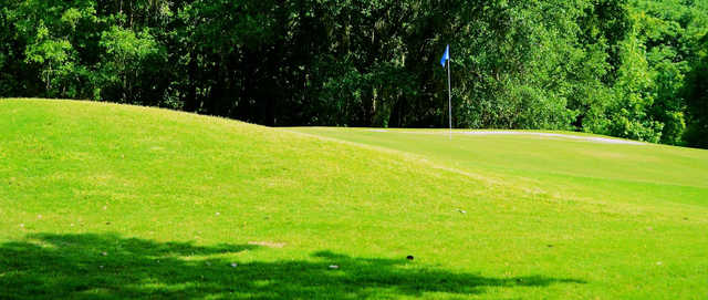 A view of a green at Suwannee Country Club.