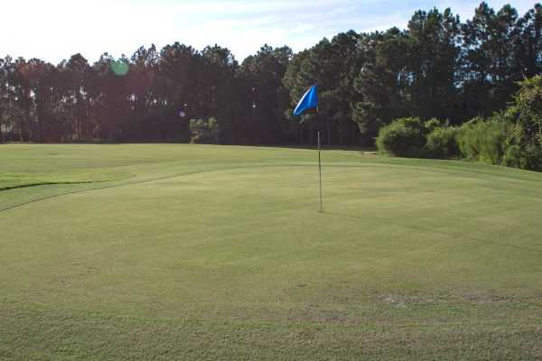A view of a green at St. Augustine Shores Golf Club.