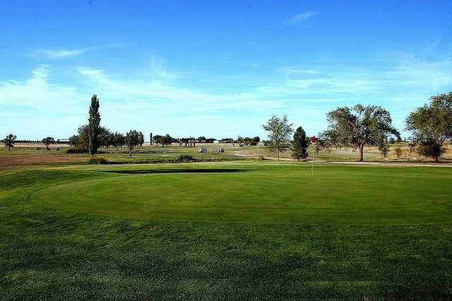 A view of a green at Country Club of Dimmitt.