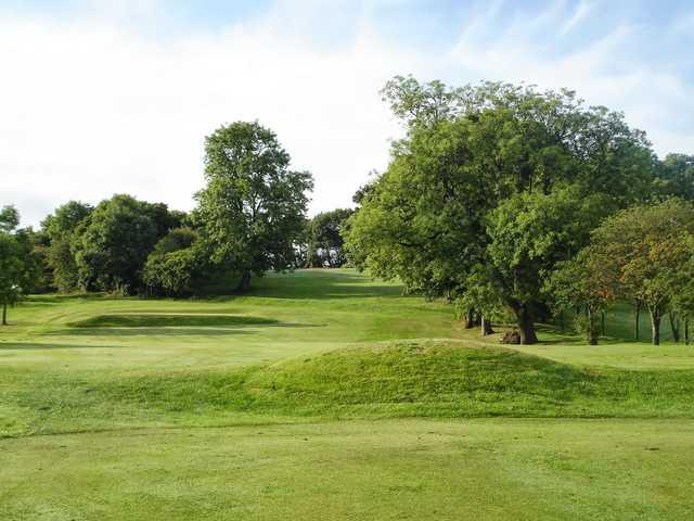 A view from Linn Park Golf Club