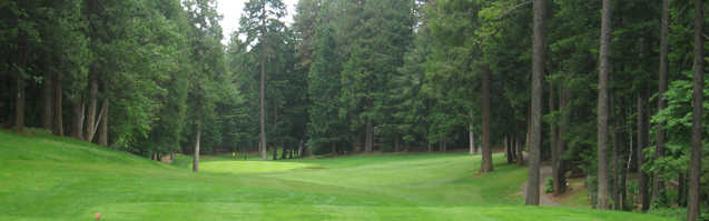 A view from a tee at Paradise Pines Golf Course.