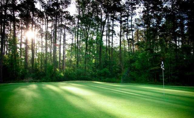 A sunny view of a green at Texas National GC