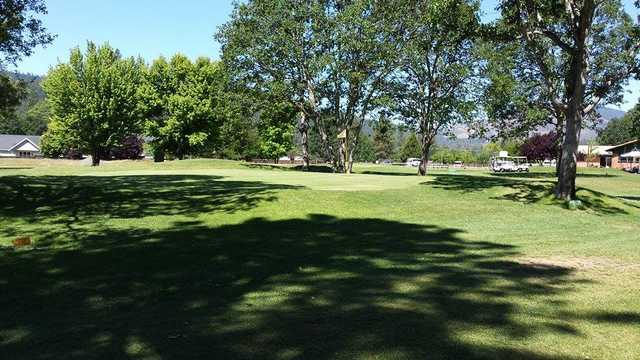 A view of a green at Trinity Alps Golf Course.