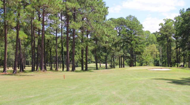 A view from a fairway at Twisted Pine Golf Course (Jeff Davis Concerned Taxpayers).