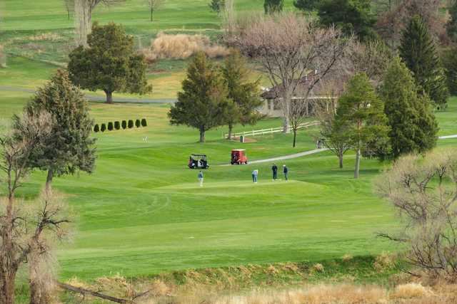 A view of a green at Clear Lake Country Club.
