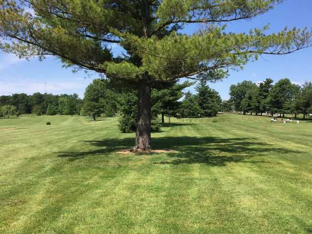 A sunny day view from Phil Harris Golf Course.