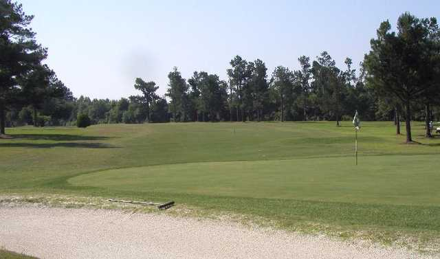 A view of hole #12 at Shannon Greens Golf Club