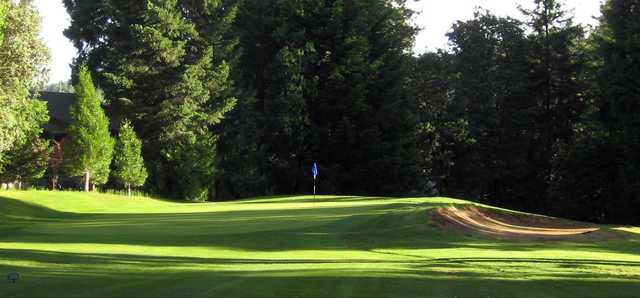 View of a green at Mace Meadow Golf Club