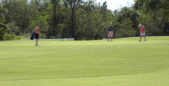 A view of a green at Spanish Lakes Country Club.