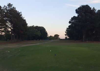 A view of a tee at Decatur Golf Club (Ricky Walker).