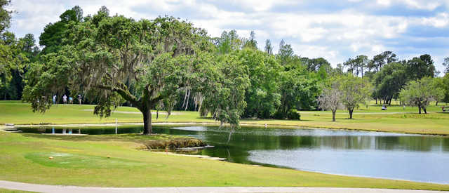 A view from The Claw at University of South Florida Golf Course