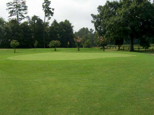 A view of green #8 at McCanless Golf Club