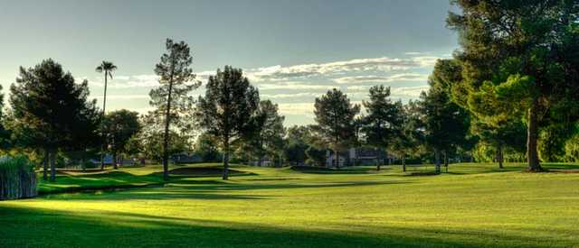 A sunny day view from Dobson Ranch Golf Course.