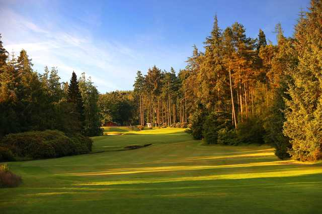 A view from a fairway at Slaley Hall Hotel & Golf.