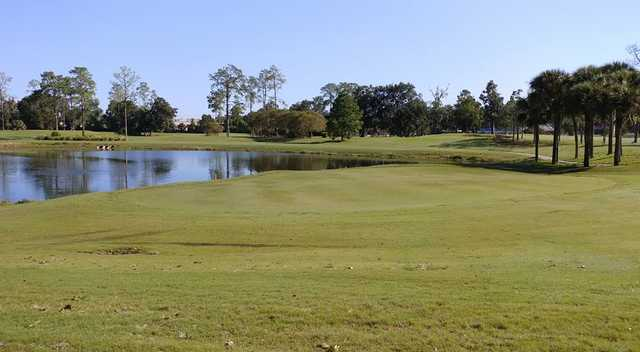 A sunny day view from Ocala Golf Club.
