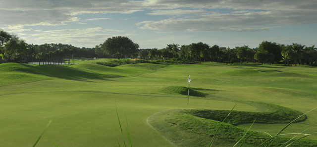 A view of a green at Pelican Marsh Golf Club.