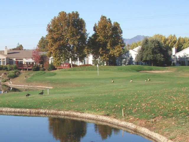 A view of the 5th green at Diablo from Brentwood Golf Club.