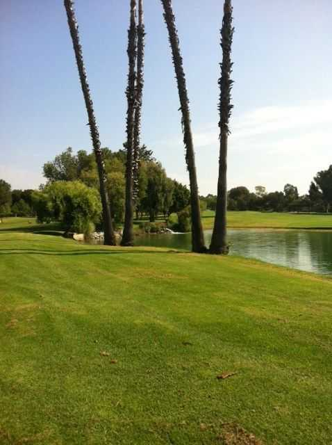 A view from Los Coyotes Country Club.
