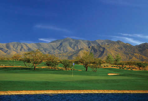 A view of green at SaddleBrooke Ranch Golf Club