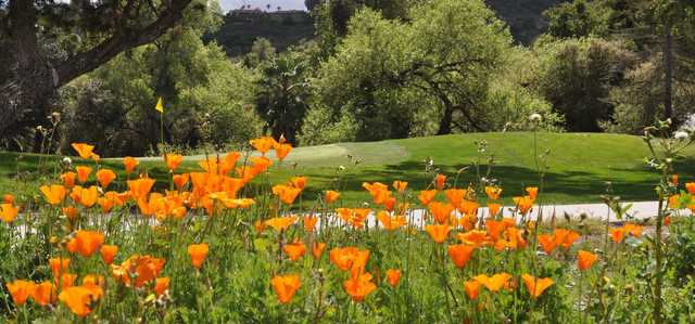 A view of a green surrounded by flowers at San Vicente Golf Resort.