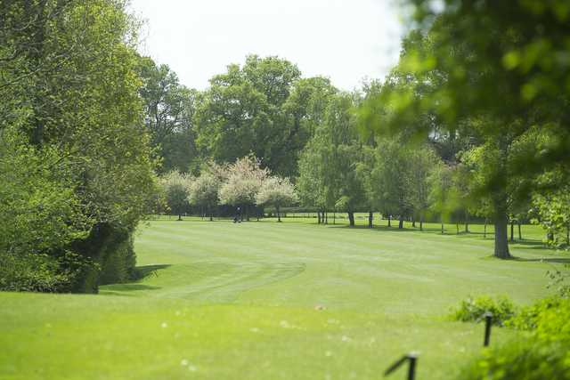 A view from Bramshaw Golf Club