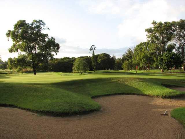 View of a green at Waratah Golf Club.