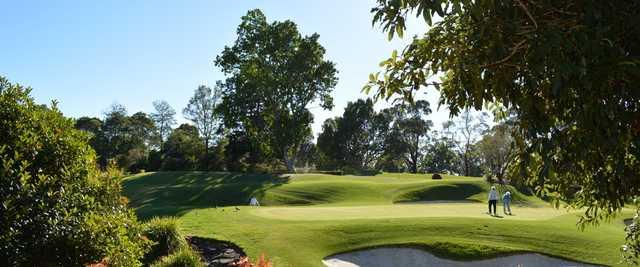 A view from Ryde-Parramatta Golf Club