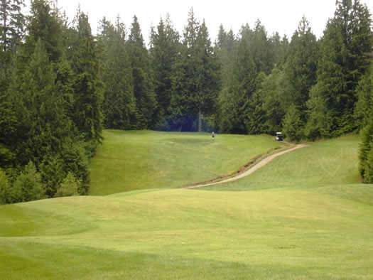A view from Eighteen Pastures Golf Club