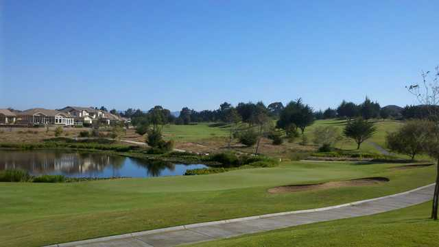 A sunny day view of a green at Cypress Ridge Golf Course.