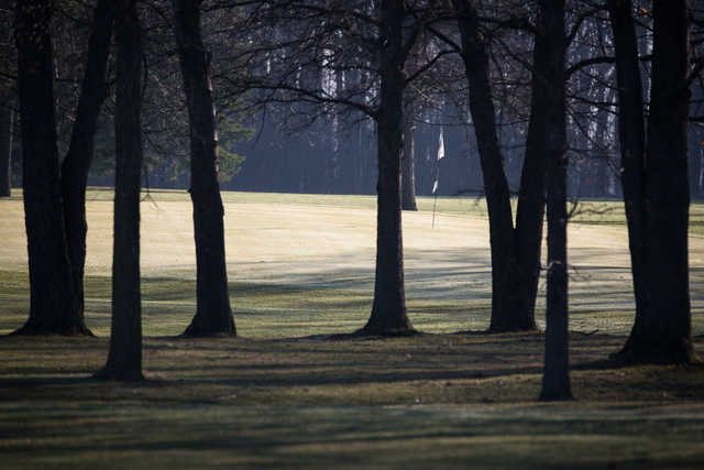 A view of a hole protected by trees at Rolling Meadows Country Club.