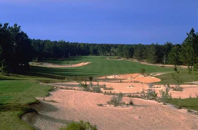 Pine Barrens at World Woods: View from No.1